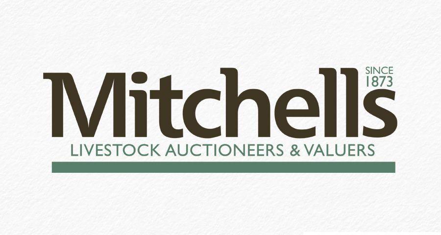 Mitchells Auction Company identity design