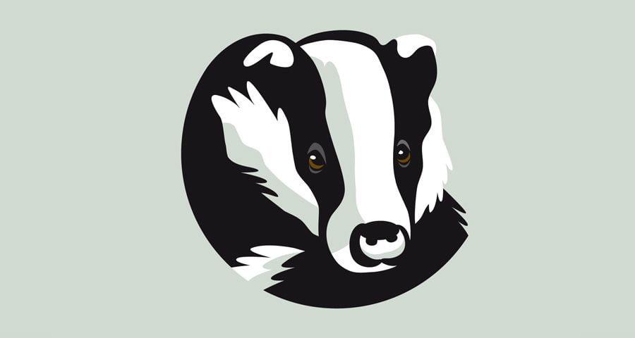 Badger Bar identity design