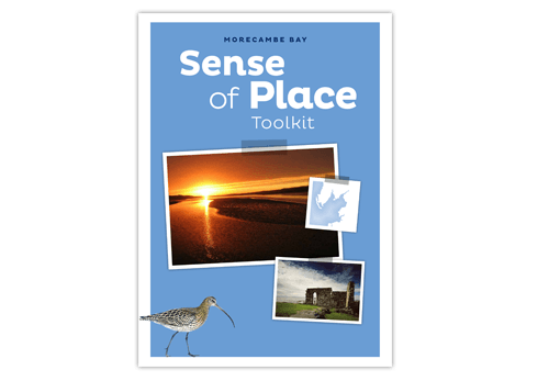 Morecambe Bay Toolkit