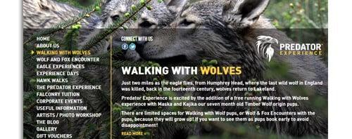 Predator Experience Website